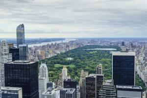 Central Park from Above, New York City by Fraser Hall