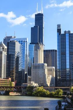 Chicago Cityscape by Fraser Hall