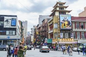 Chinatown, Manhattan, New York City, United States of America, North America by Fraser Hall