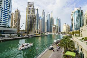 Dubai Marina, Dubai, United Arab Emirates, Middle East by Fraser Hall