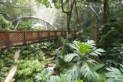 Hong Kong Park Aviary in Central, Hong Kong Island, Hong Kong, China, Asia by Fraser Hall