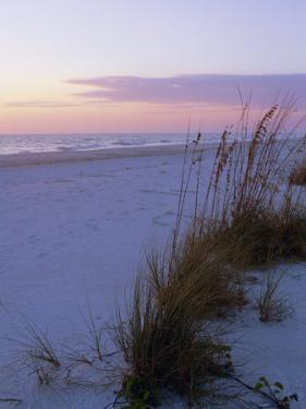 Sunset, Bradenton Beach, Anna Maria Island, Gulf Coast, Florida, USA by Fraser Hall