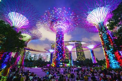 Supertree Grove in the Gardens by the Bay, a Futuristic Botanical Gardens and Park by Fraser Hall