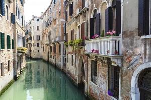 Venice, Italy by Fraser Hall