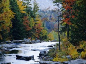 White Mountains National Forest, Near Jackson, New Hampshire, USA by Fraser Hall