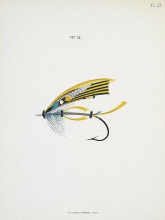 A Fishing Fly and Hook, Fishing Tackle by Fraser Sandeman