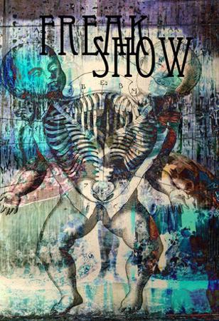 Freak Show 3