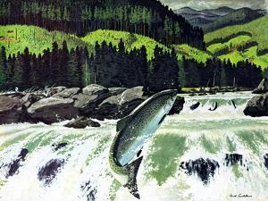 Salmon Run by Fred Ludekens