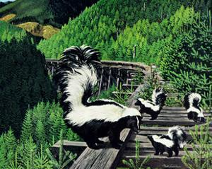 Skunk Family by Fred Ludekens