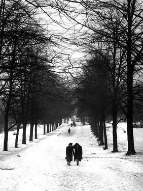 Hampstead Heath 1939 by Fred Musto