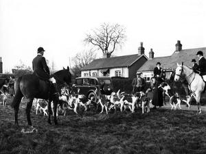 Herfordshire Fox Hunt by Fred Musto