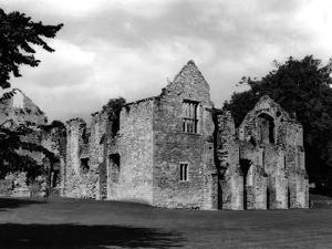 Netley Abbey by Fred Musto