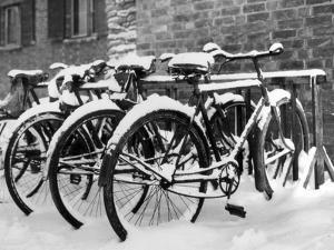 Snow-Covered Bicycles by Fred Musto