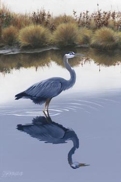 Blackwater Reflections I by Fred Szatkowski