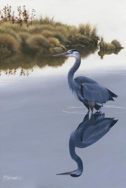 Blackwater Reflections II by Fred Szatkowski