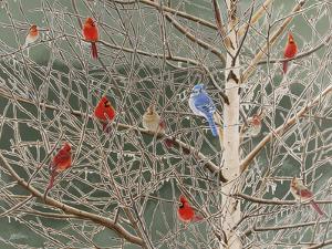 Ornaments by Fred Szatkowski