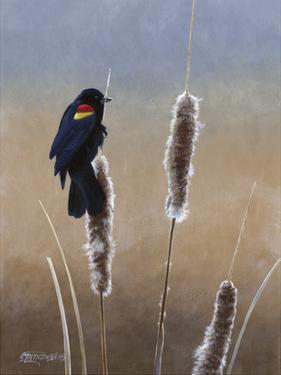 Redwing Morning I by Fred Szatkowski