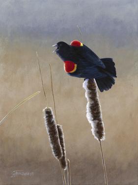 Redwing Morning II by Fred Szatkowski