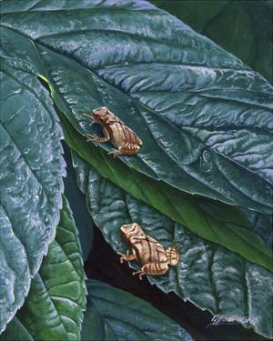 Spring Peepers II by Fred Szatkowski