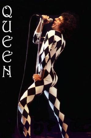 Freddie Mercury-Leotard