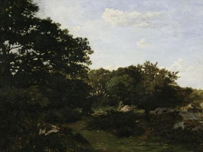 Edge of the Forest in Fountainbleau, c.1865 by Frederic Bazille