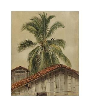 Palm Trees and Housetops, Ecuador by Frederic Edwin Church