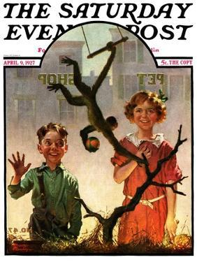 """""""Pet Shop Monkey,"""" Saturday Evening Post Cover, April 9, 1927 by Frederic Stanley"""