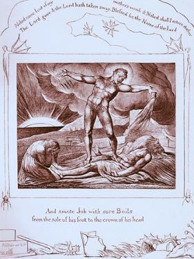 Nicholas Nickleby by Charles Dickens by Frederick Barnard