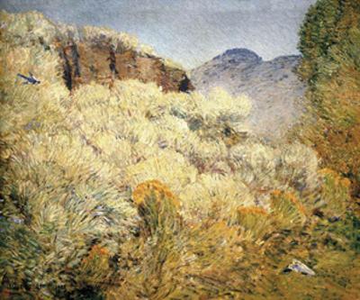 Harney Desert, 1908
