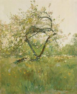 Peach Blossoms - Villiers-le-Bel by Frederick Childe Hassam