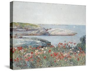 Poppies, Isles of Shoals 1891 by Frederick Childe Hassam
