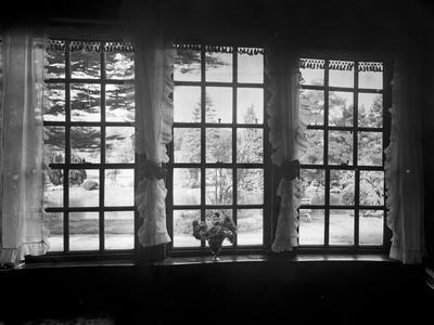View from a Window, Brinsop Court