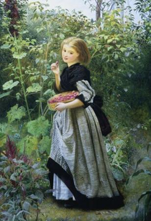 A Garden Harvest by Frederick Smallfield