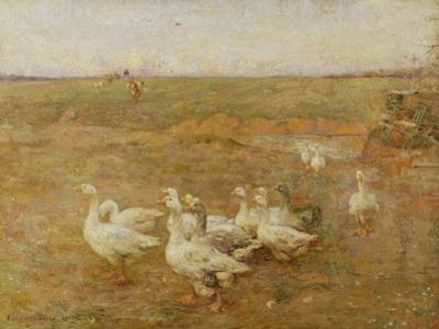 Golden Evening, 1897