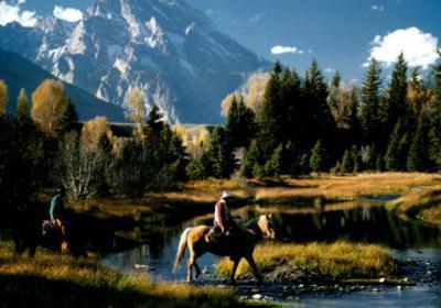 Freedom: Cowboys