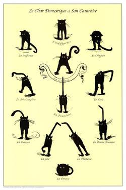 French Caractere Le Chat Domestique Art Print Poster