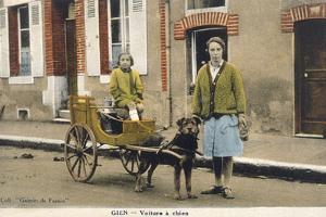 French Dog Cart