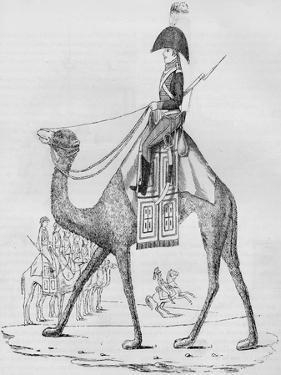 French Domedary Regiment. Captured with a Convoy in the Lybian Desert, May, 1801