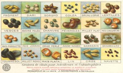 French Grain Chart