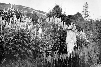 Claude Monet at Giverny, 1908 by French Photographer