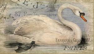 French Swan