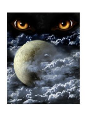 Full Moon by frenta