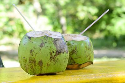 https://imgc.allpostersimages.com/img/posters/fresh-coconut_u-L-Q1039630.jpg?p=0