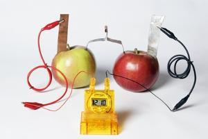 Fruit-powered Clock by Friedrich Saurer