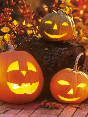 Halloween: Hollowed Out Pumpkins with Candles by Friedrich Strauss