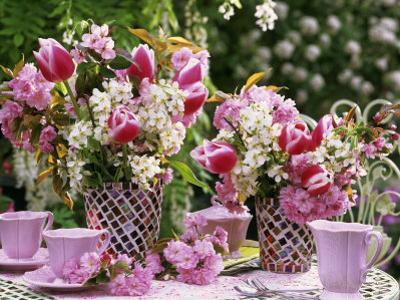 Vases of Pink Tulips and Blossom on Table Laid for Coffee