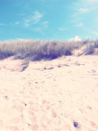 Dune on the Baltic Beach Close Graal-MŸritz