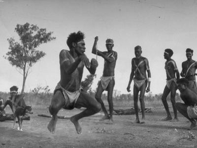 Australian Aborigines Filled with the Spirit of the Kangaroo, Dancing to Honor the Sacred Marsupial