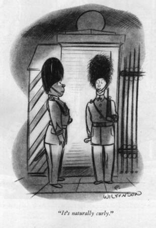 """""""It's naturally curly."""" - New Yorker Cartoon"""