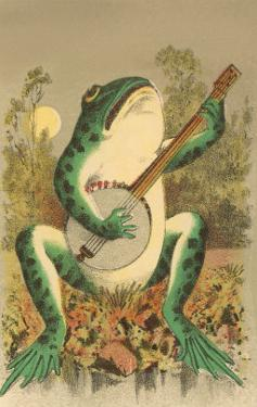 Frog Playing Banjo in Moonlight